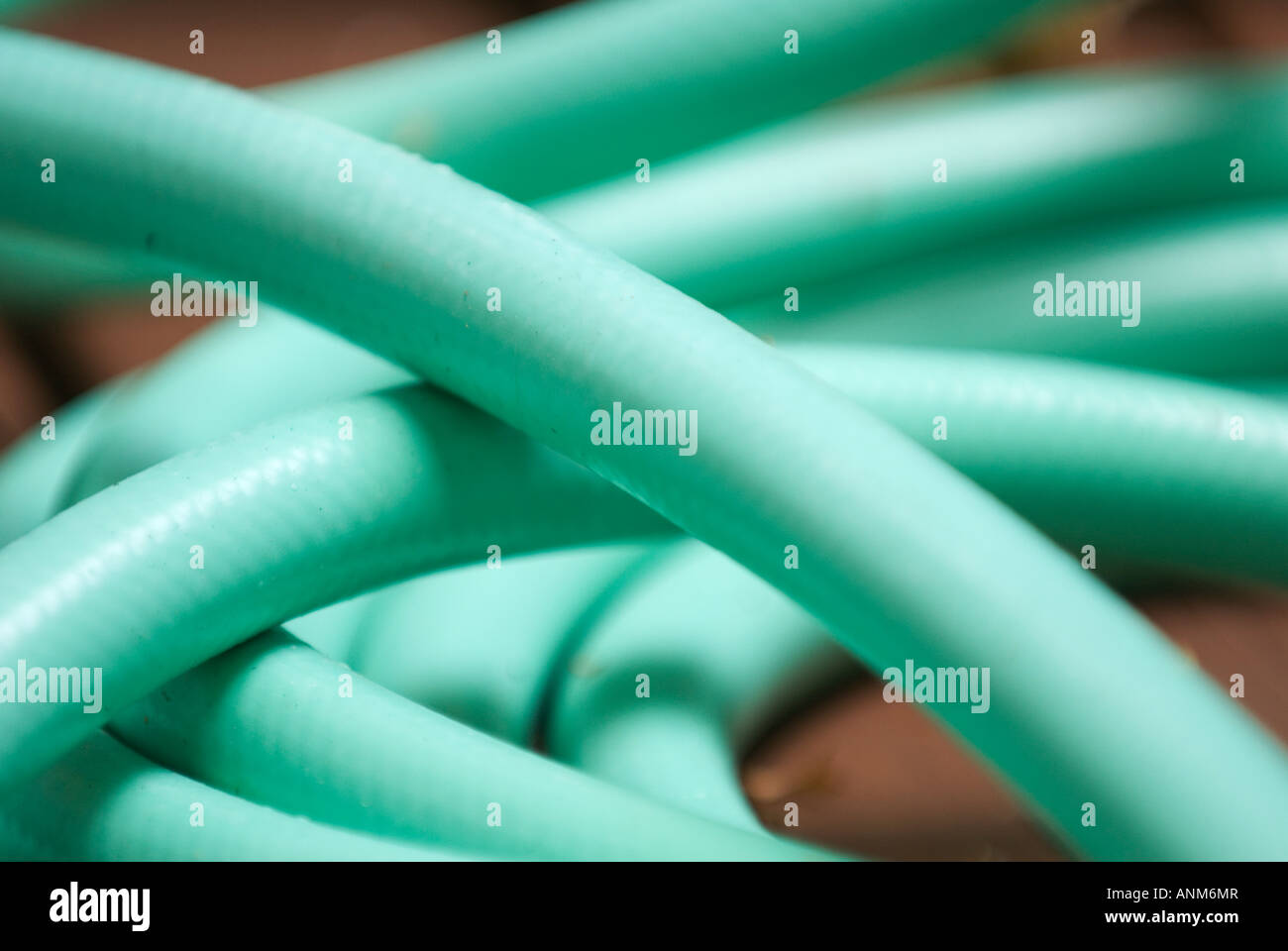 Coiled Garden Hose Background Soft Focus Still Life   Stock Image