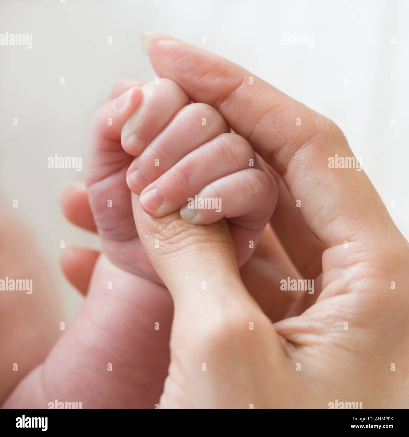 Close up of mother holding baby's hand - Stock Image
