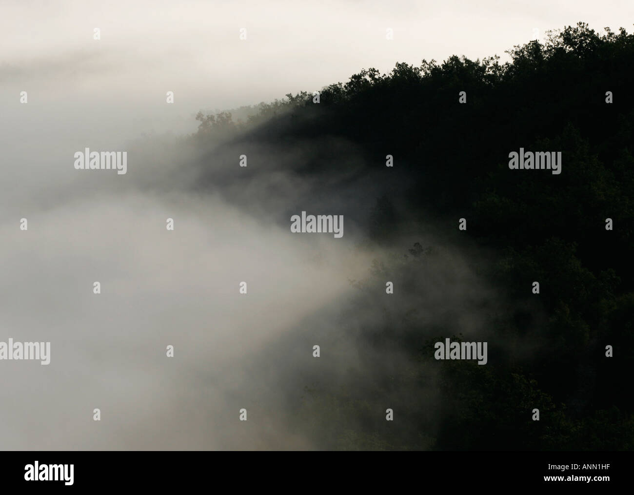 Landscape with black hillside and white mist in the Lot valley south west France - Stock Image