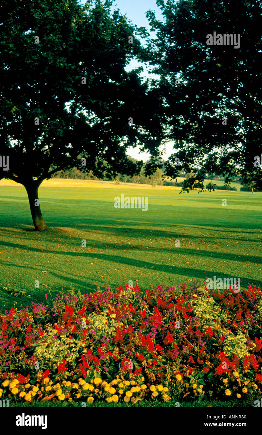Green lawn and colourful flower beds in summer in Rosehill Park London England UK - Stock Image