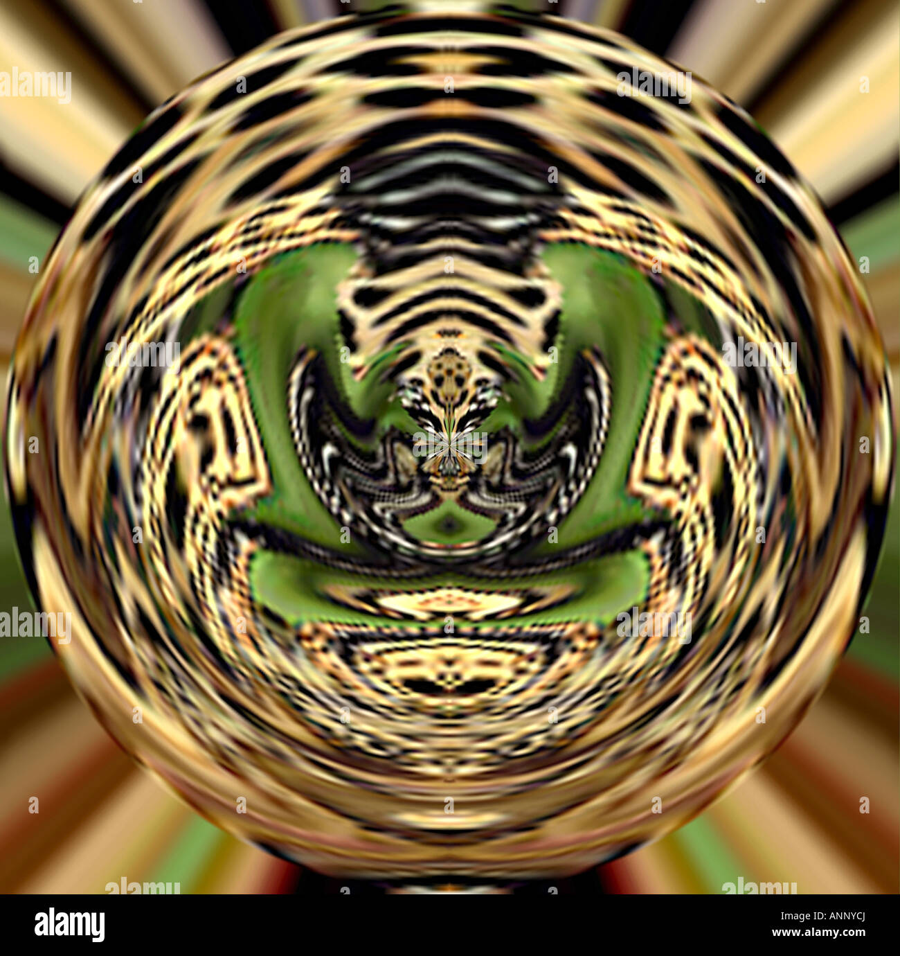 Global Jungle Abstract Fine Art Image for Environmental Tourism Business or Sports Logo or as Dramatic Art Kanha - Stock Image