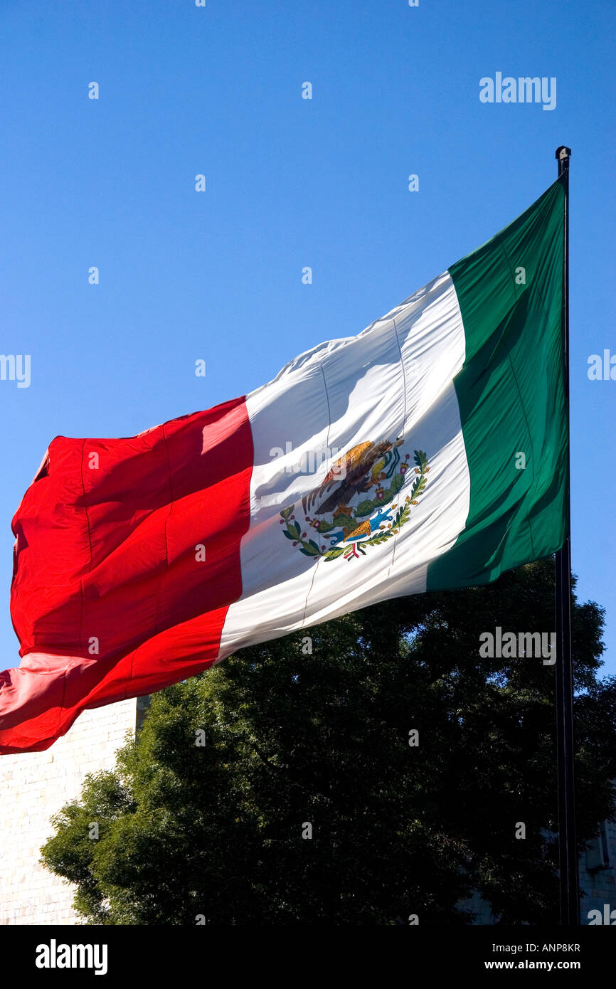The National Flag of Mexico in Mexico City Mexico - Stock Image