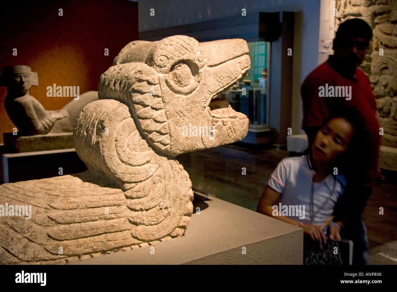 Serpant artifact on display at the National Museum of Anthropology in Mexico City Mexico Stock Photo