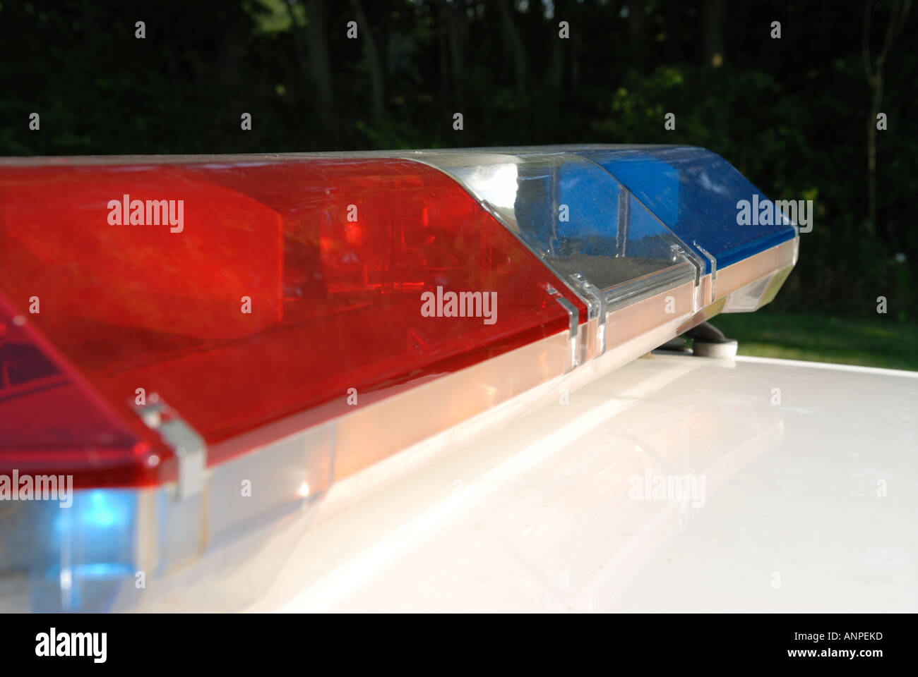 Red And Blue Police Lightbar On White Police Car Stock Photo