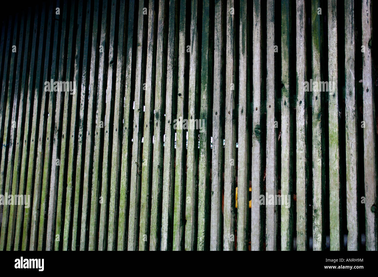 A Wall Of Lengthy Strips Of Wood,On The Side Of A Makeshift Barn. - Stock Image