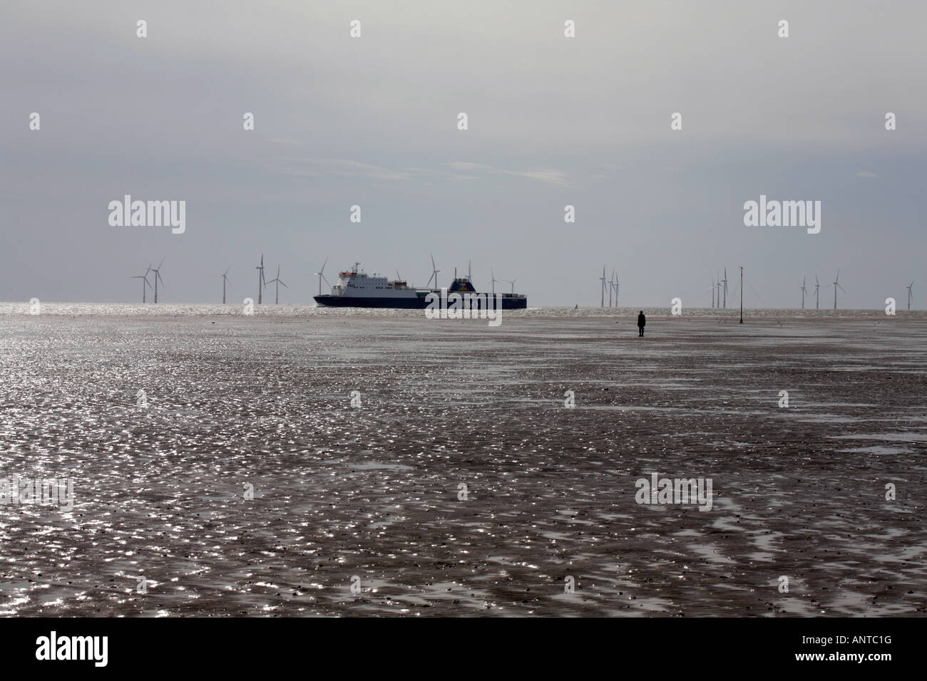 Ferry sailing past  Another Place figure sculptures on the beach by Anthony Gormley at Crosby Liverpool England - Stock Image