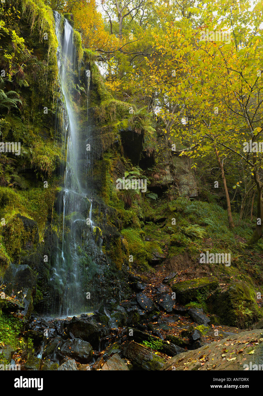 The famous Mallyan Spout Waterfall in Goathland North Yorkshire England - Stock Image