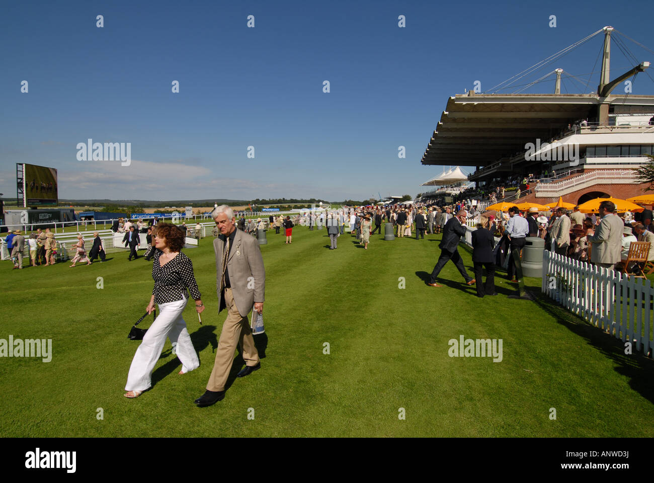 Racegoers at the Glorious Goodwood race meeting Picture by Andrew Hasson July 31st 2007 - Stock Image