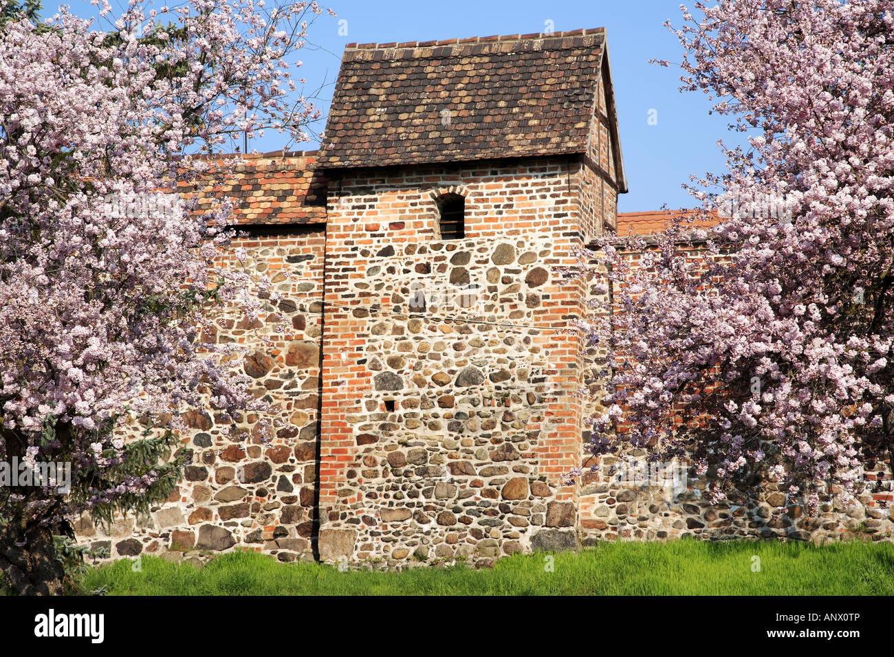 city wall, Germany, Saxony-Anhalt, Zerbst Stock Photo