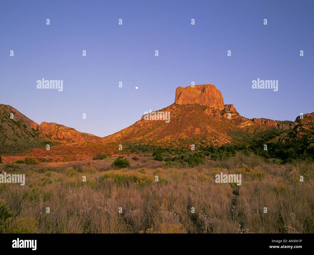 Moonrise over the Chisos Mountains in Big Bend National Park along the Rio Grande River Stock Photo