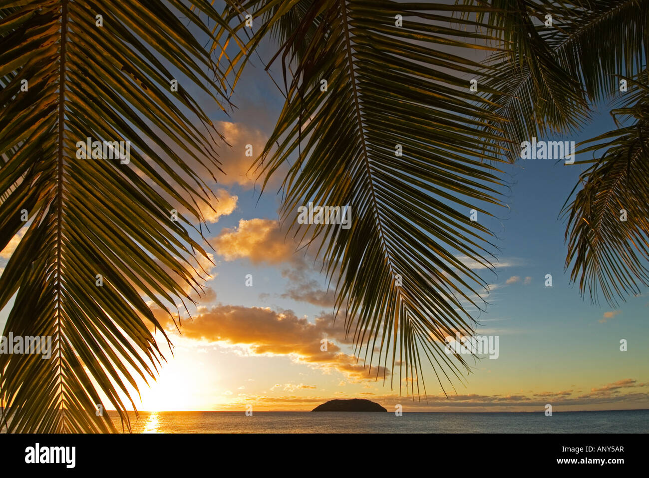 South Pacific, Fiji, Kadavu. Sunset through plams from the beach on Dravuni Island. - Stock Image