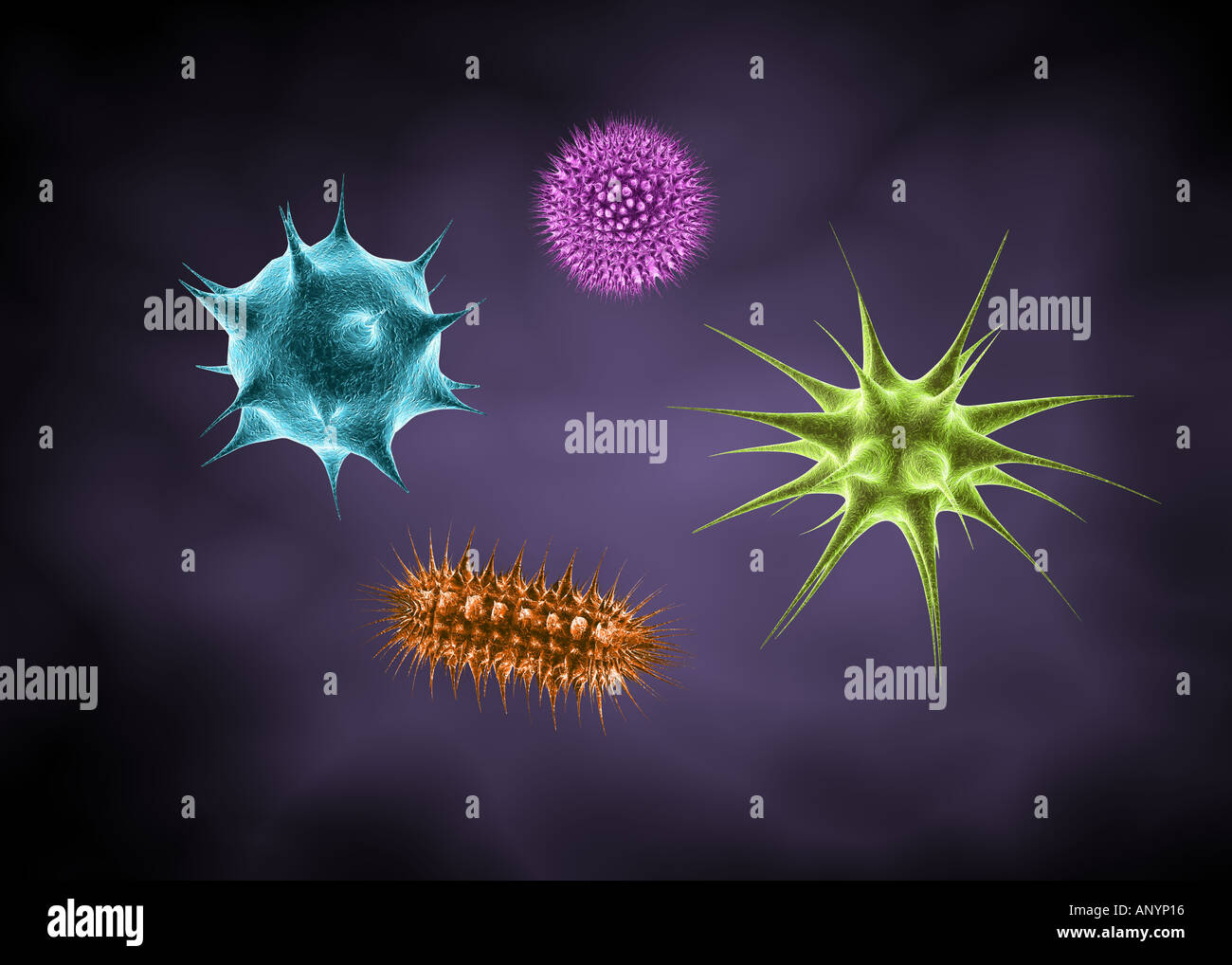 4 Different types of backteria microbes germs - Stock Image