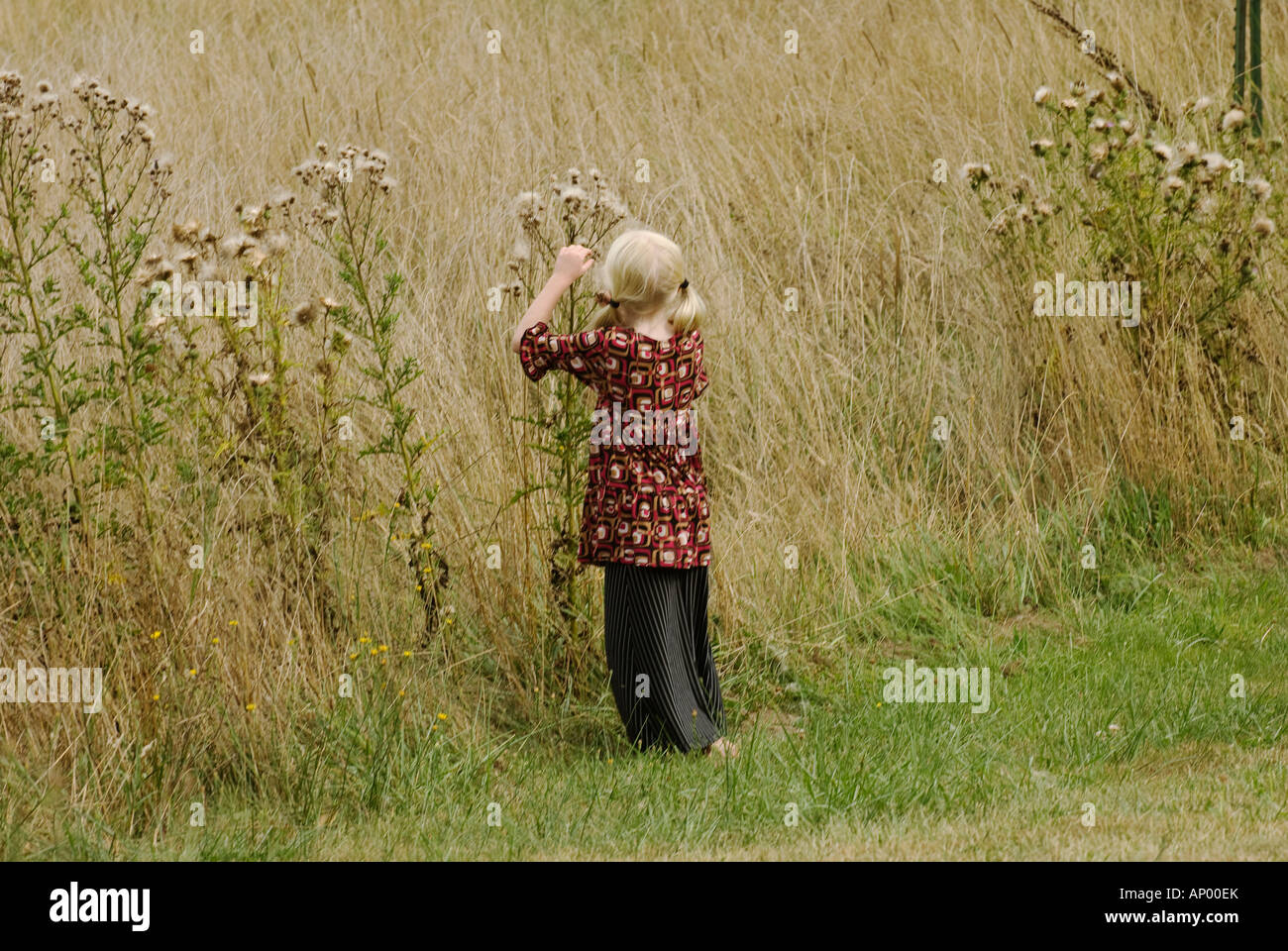 Skirted Stock Photos & Skirted Stock Images - Alamy