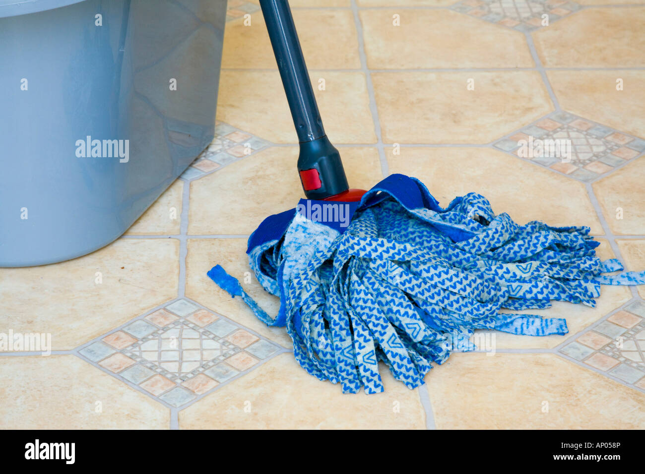 Blue Cloth Mop Head Grey Plastic Bucket Washing Cleaning Lino Floor - Easiest way to clean linoleum floors