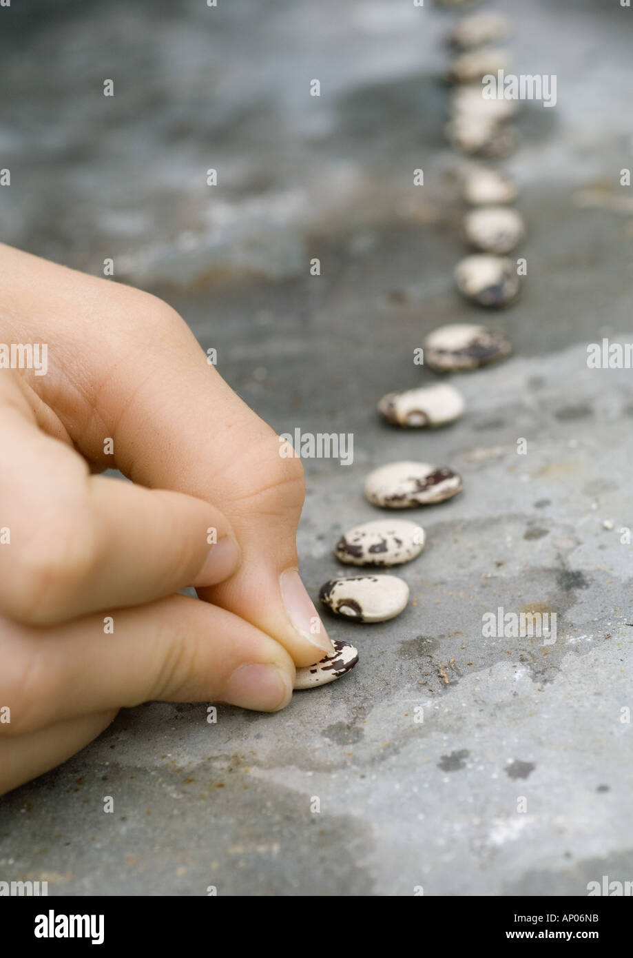 Hand placing seeds in a row - Stock Image
