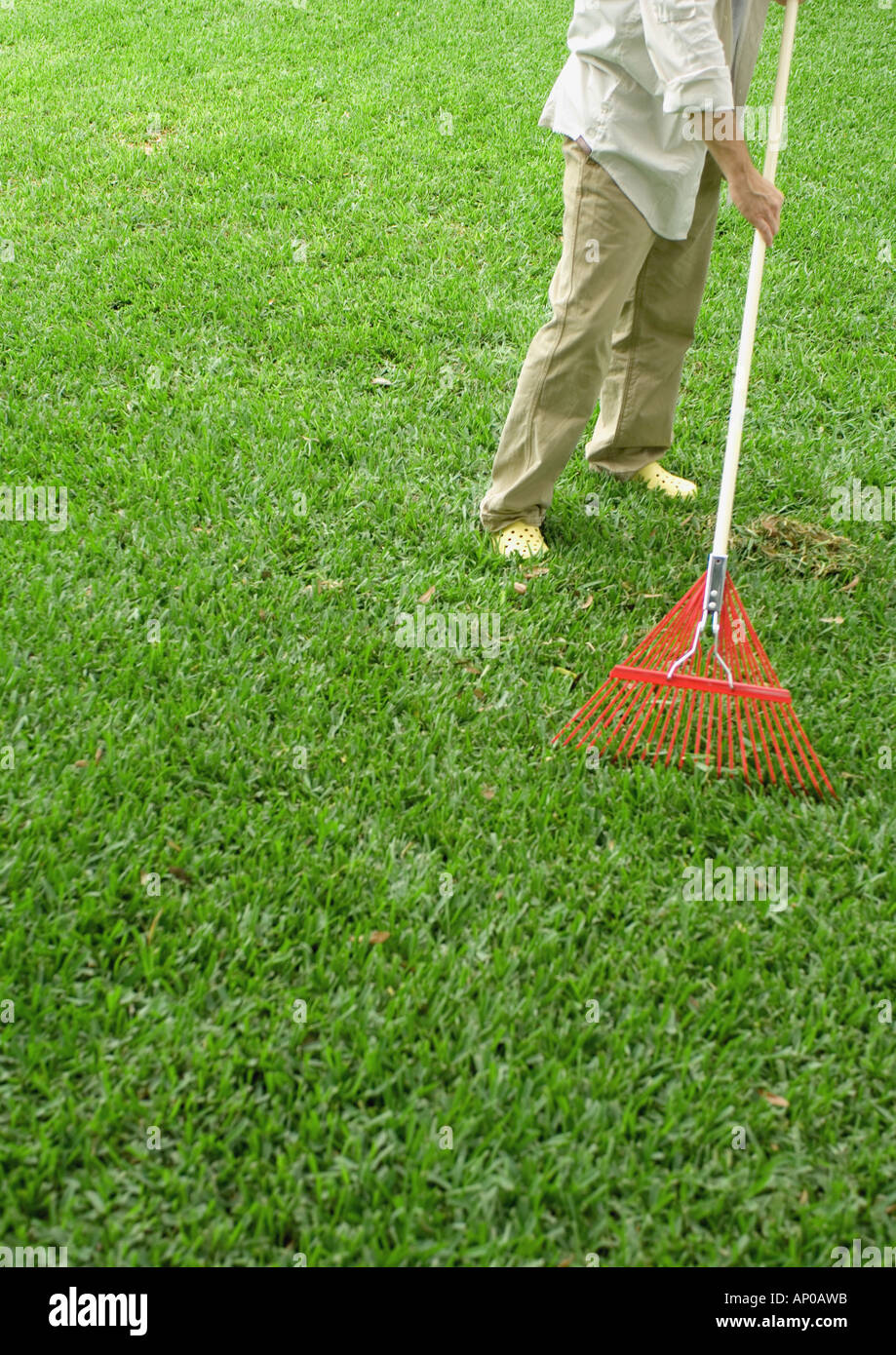 Man raking yard, low section - Stock Image