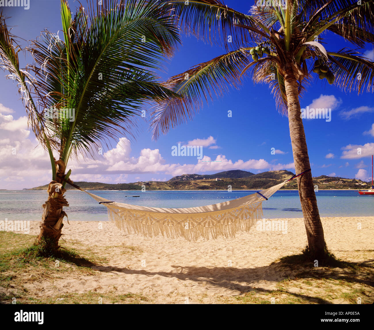 Hammock sways in the breeze on the Caribbean beach at Baie De L Embouchure St Martin - Stock Image