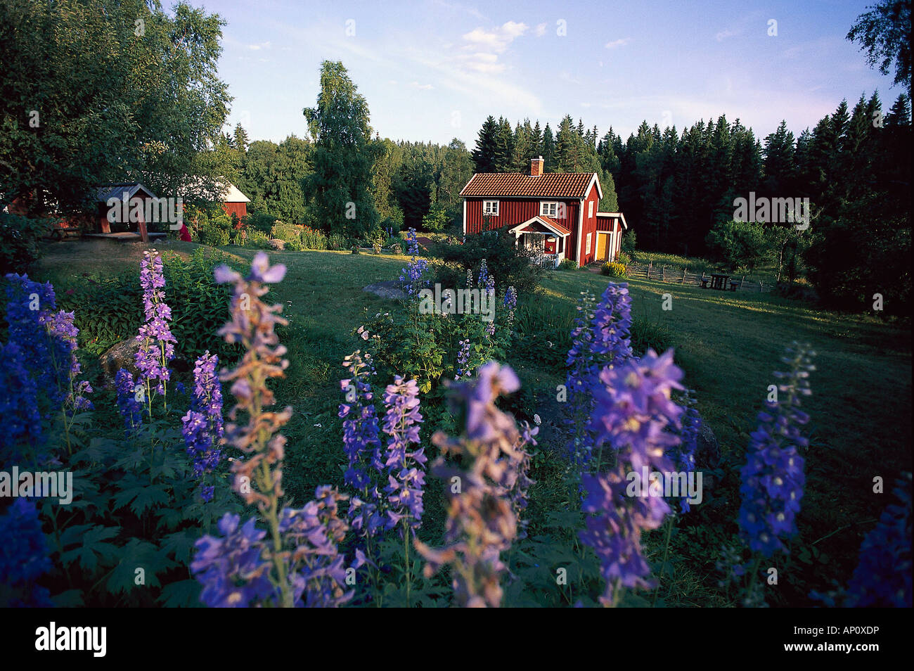 Hof Katthult, film location of Emil i Lonneberga, Gibberyd, Smaland, Sweden - Stock Image