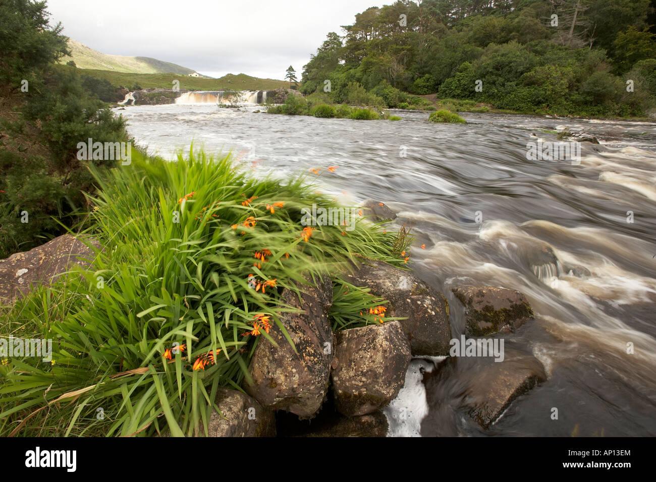 Aasleagh falls on the Erriff River near Leenane Leenaun Connemara County Mayo Republic of Ireland - Stock Image