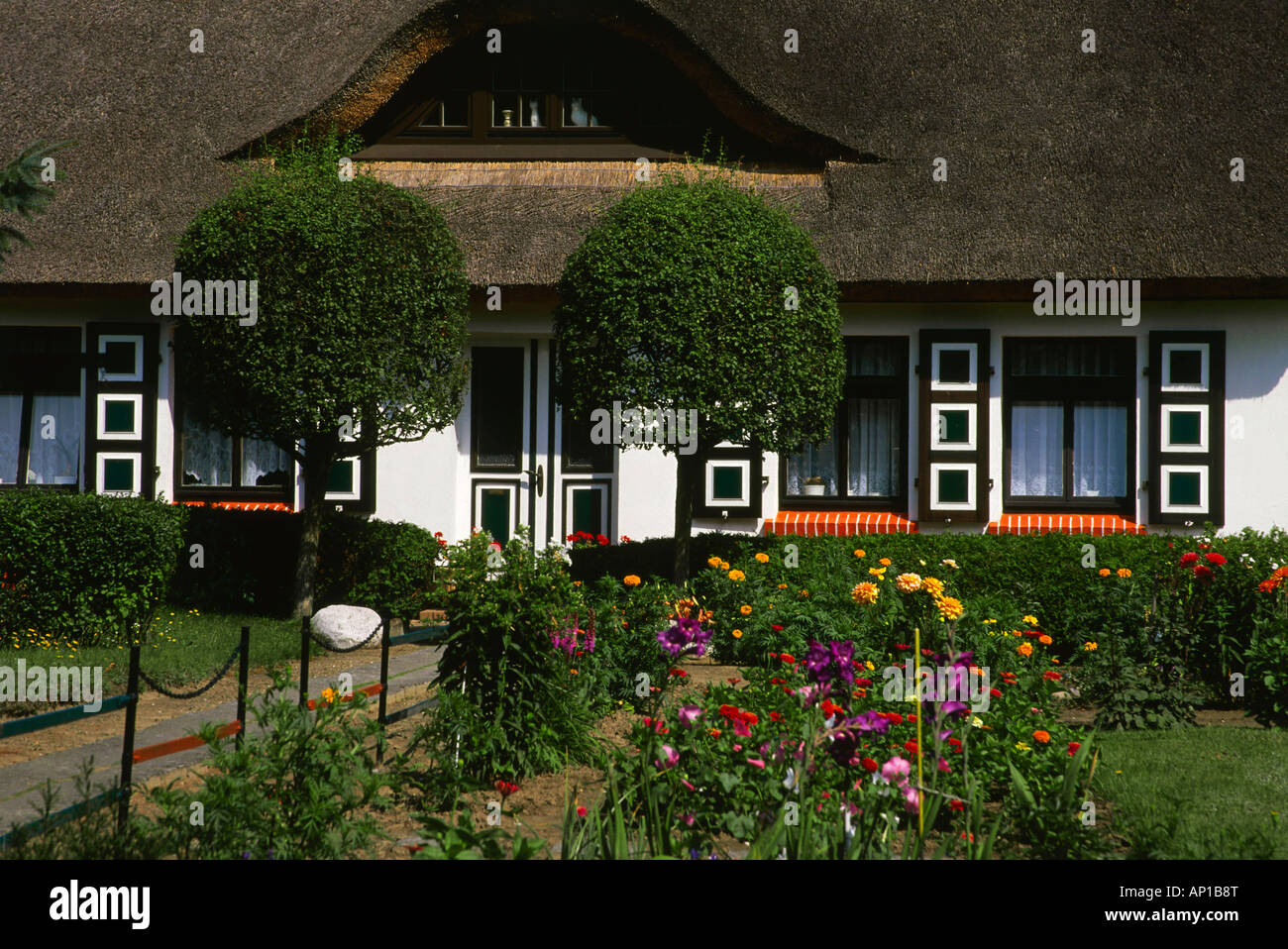 House with typical roof in Wiek, Darss, Mecklenburg-Western Pomerania, Germany - Stock Image