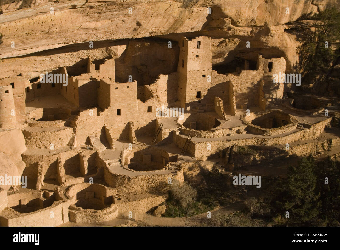 3th century native indian cliff buildings Mesa Verde National Park Cliff Palace the best known of the cliff dwellings - Stock Image