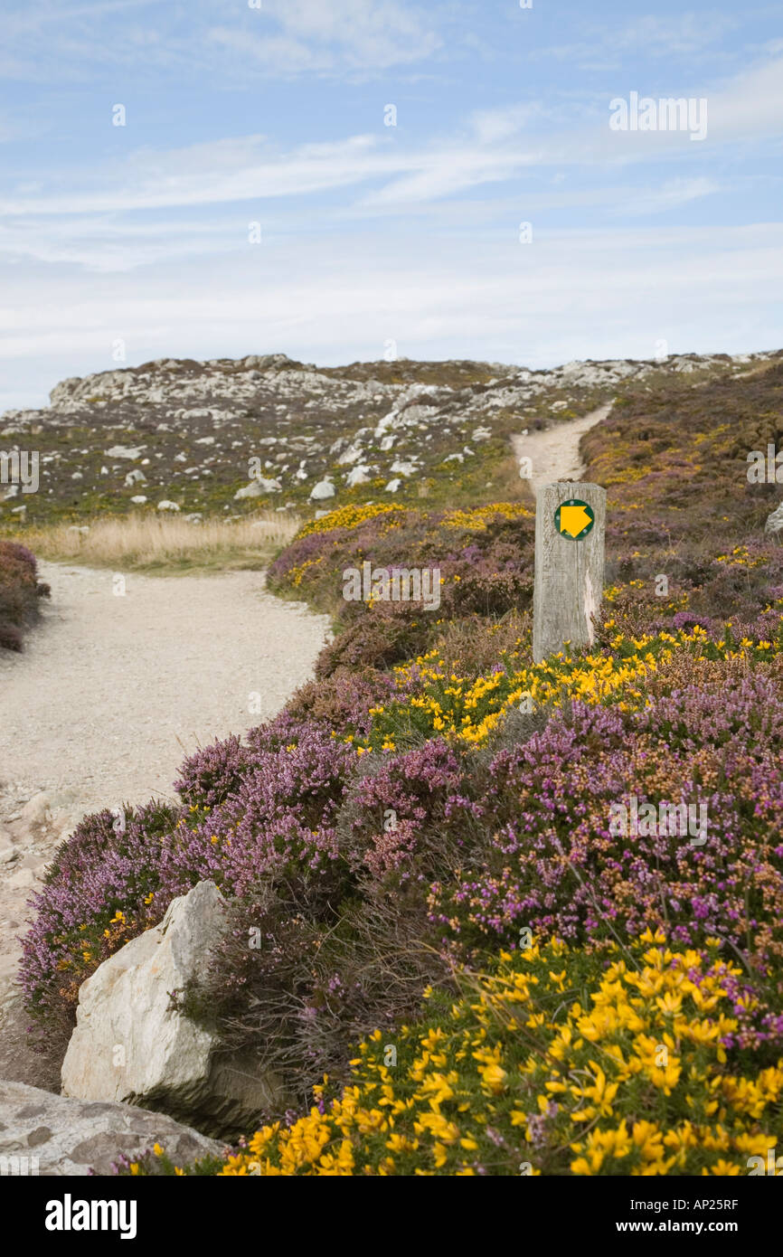 ISLE Of ANGLESEY COASTAL PATH Sign With Yellow Arrow On
