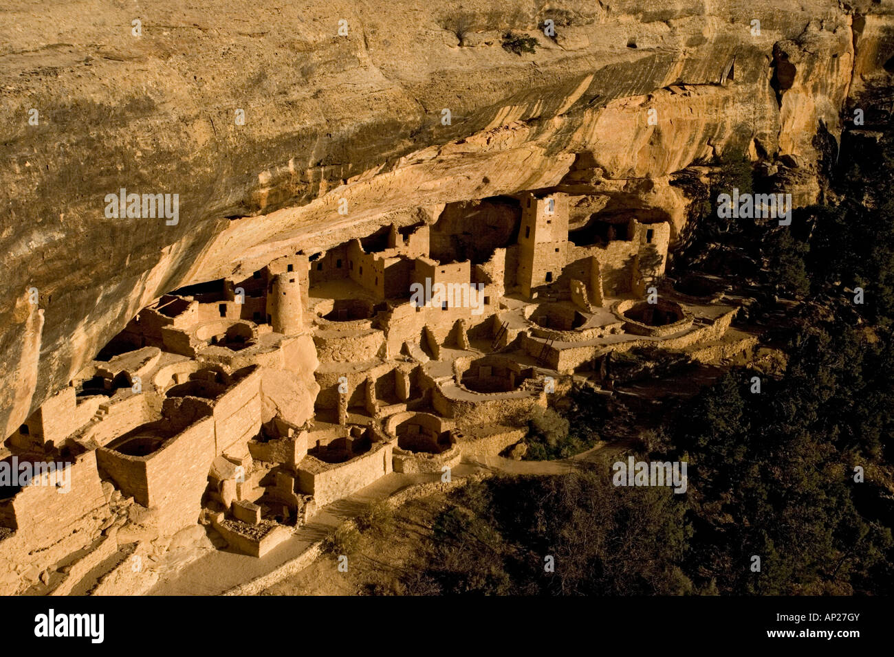 13th century native indian cliff buildings Mesa Verde National Park Cliff Palace the best known of the cliff dwellings - Stock Image