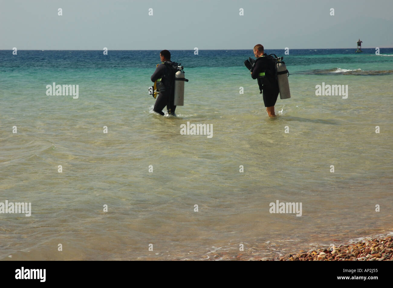 Two divers enter the sea in preparation for a dive at the Outside Hilton dive site in Nuweiba Egypt - Stock Image