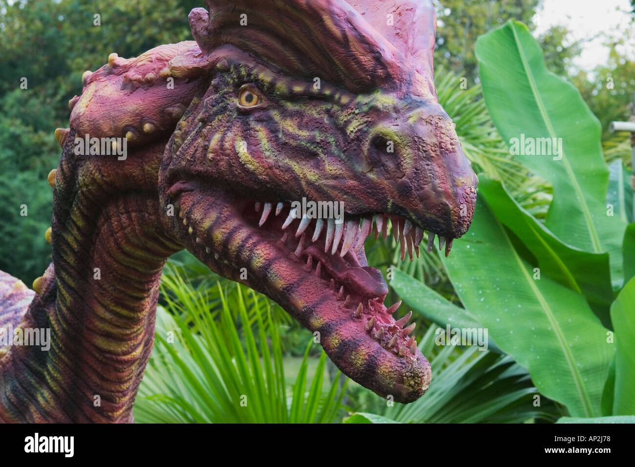 Dilophosaurus which means double crested reptile dinosaur from the early Jurassic period Goes to a length of 20 feet and w - Stock Image