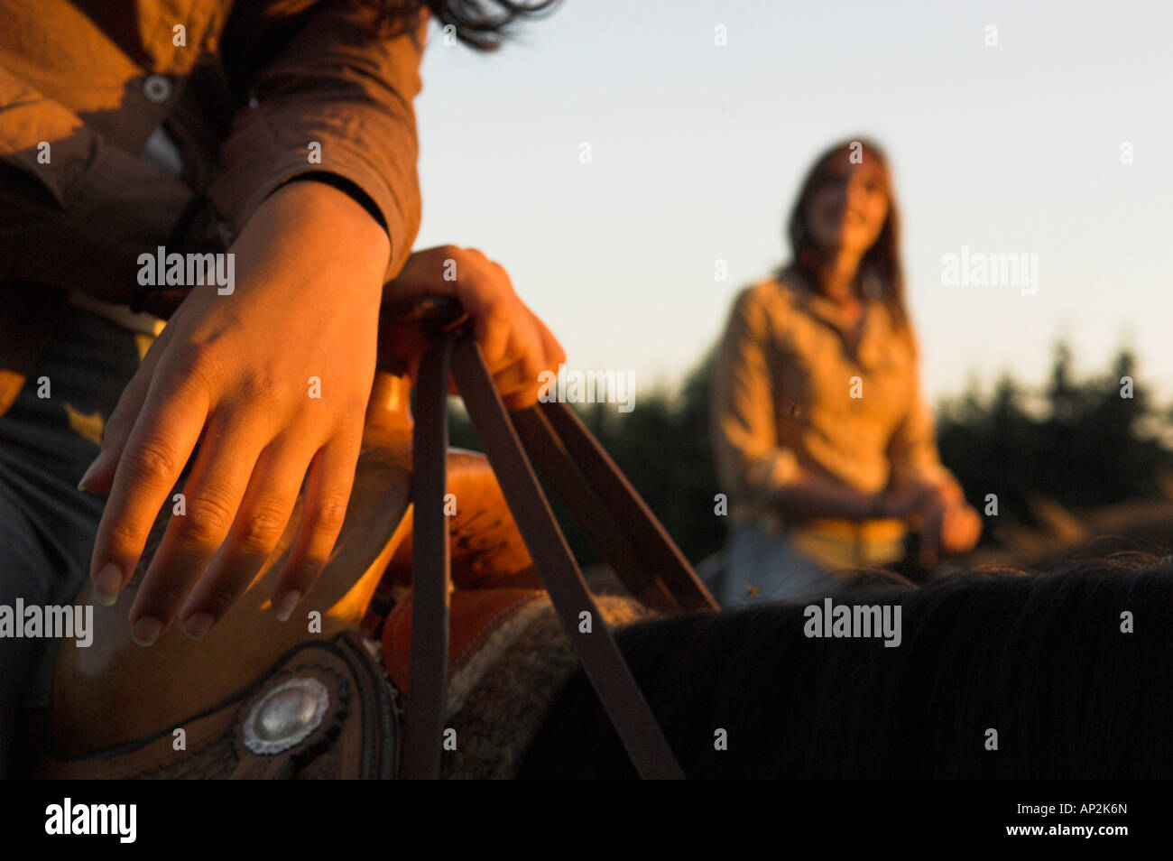 Close up of two women, horseriding, holding the reins, Muehlviertel, Upper Austria, Austria - Stock Image