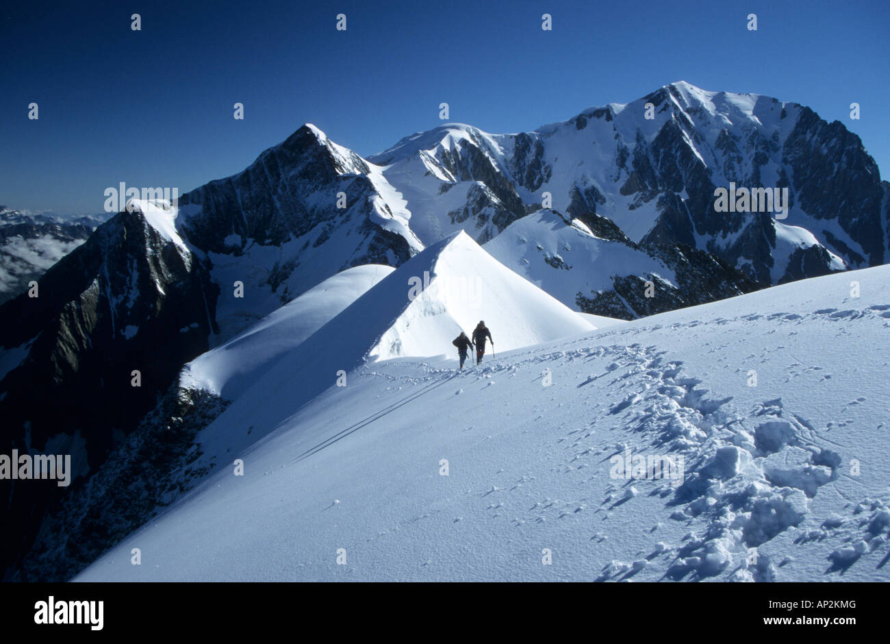 mountaineerers at ridge of Domes de Miage with Mont Blanc in background, Mont Blanc range, France - Stock Image
