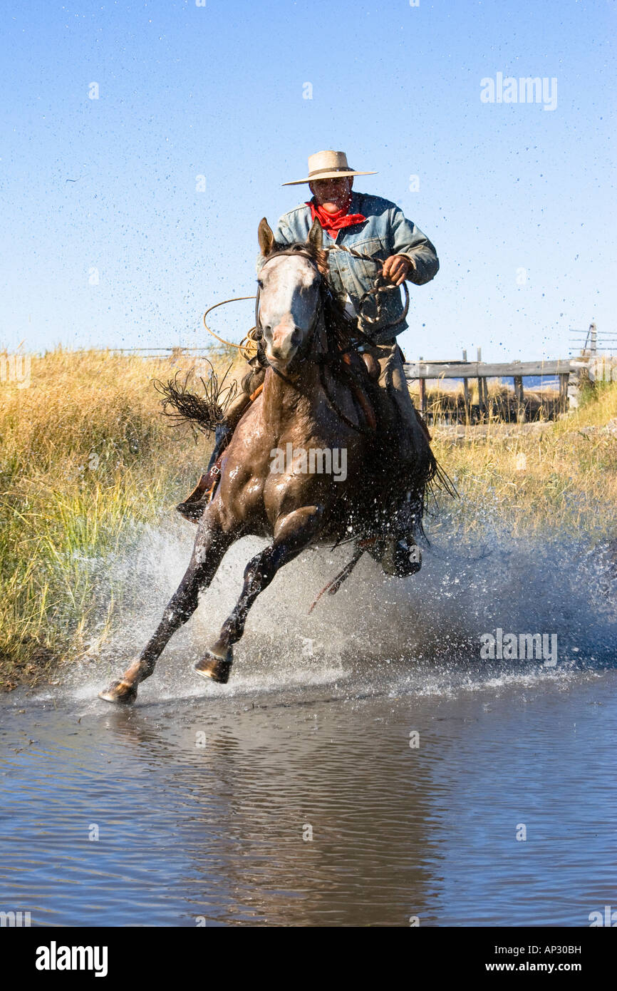 Cowboy riding in water, wildwest, Oregon, USA Stock Photo