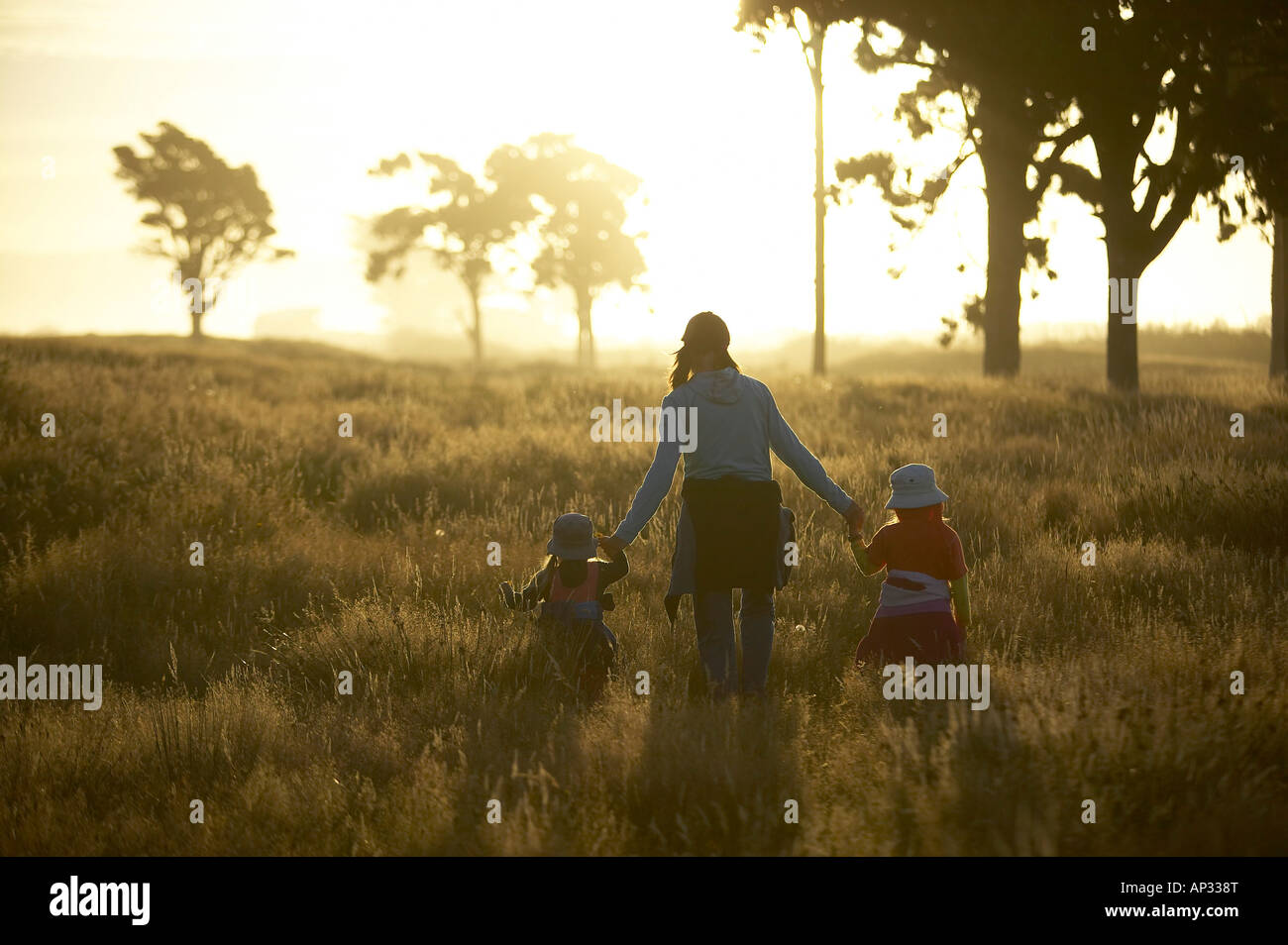 Mother and children wandering through high gras, sunset at the Westcoast, near Haast, South Island, New Zealand - Stock Image