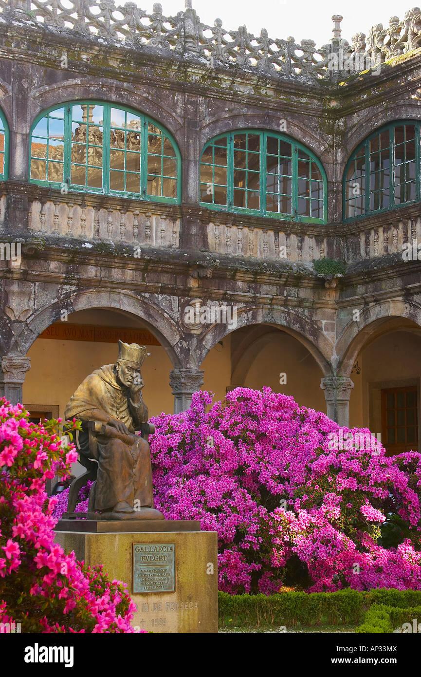 Azaleas in spring outside Colegio de Fonseca, Santiago de Compostela, Galicia, Spain - Stock Image