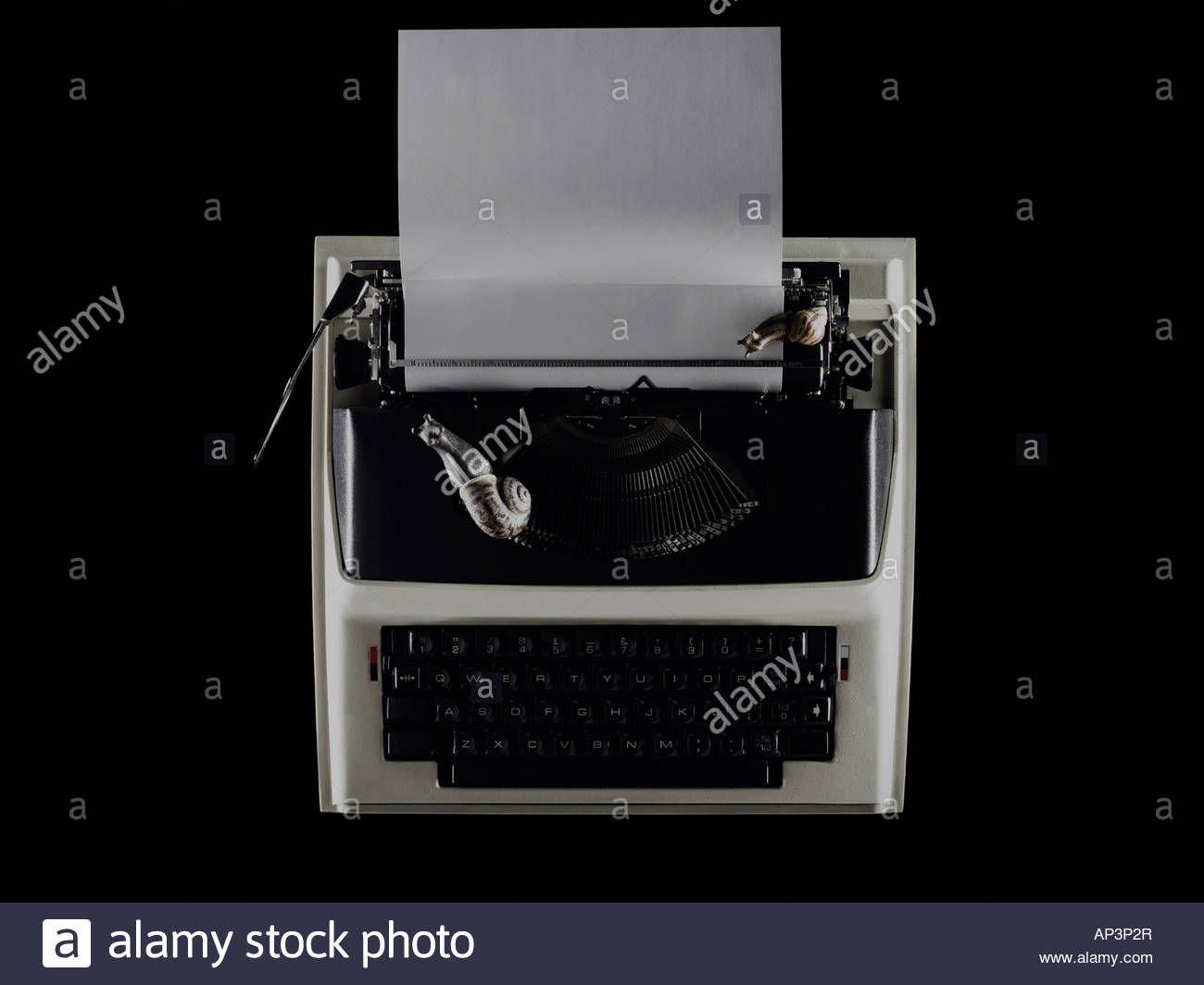 Snails on a typewriter - Stock Image