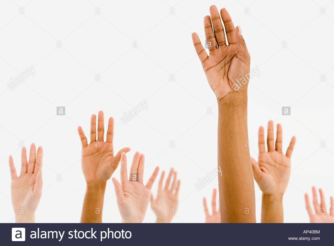 Human hands - Stock Image