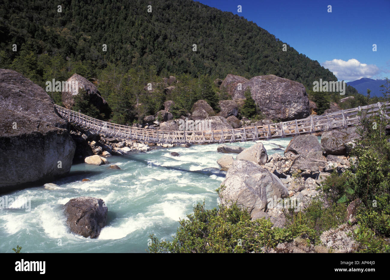 Chile, Patagonia, Queulat National Park. - Stock Image