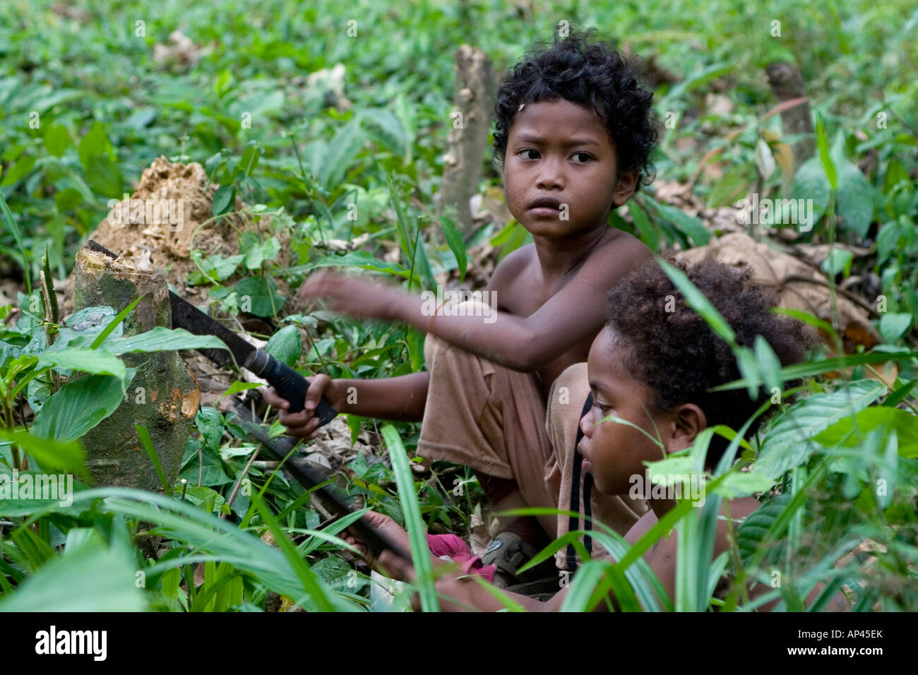 A child, a member of the Orang Asli tribe, plays with a knife in undergrowth within the Taman Negara National Park. Stock Photo