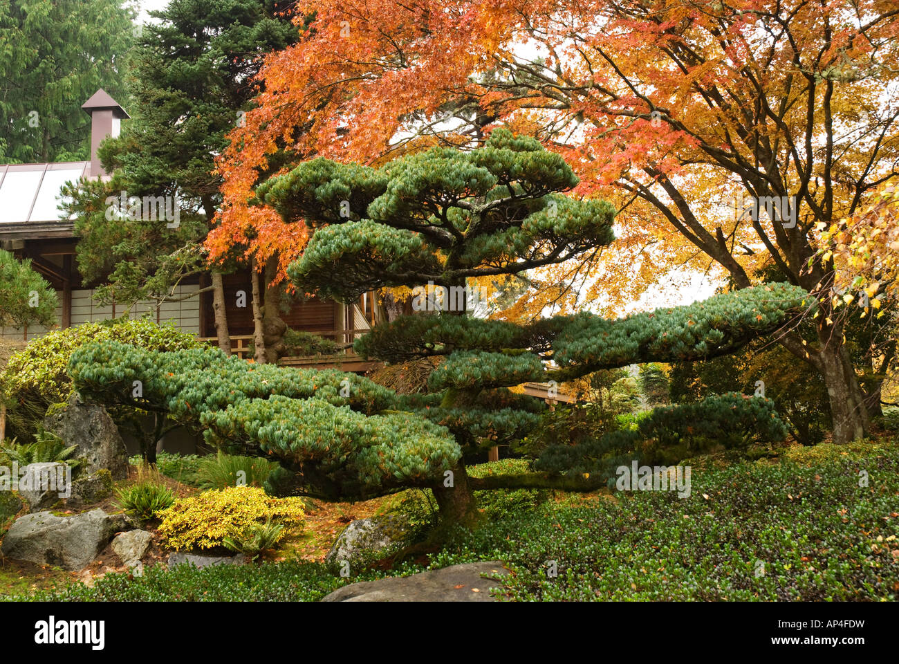 Guest House At The Japanese Garden At Bloedel Reserve Bainbridge Island  Washington