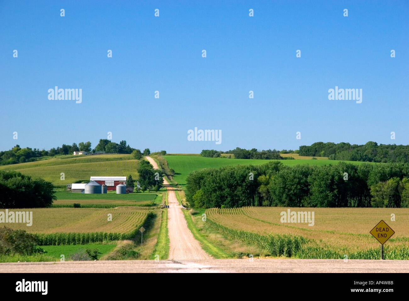 Country road with farm and corn fields south west of Traer Iowa  - Stock Image