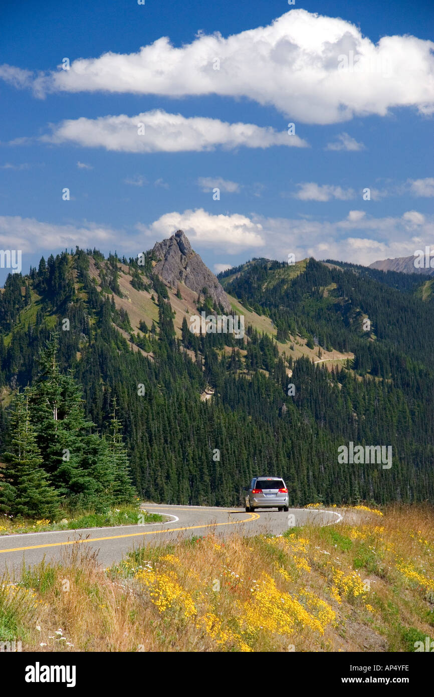 A view of Elk Mountain taken from Hurricane Ridge in Olympic National Park Washington  - Stock Image