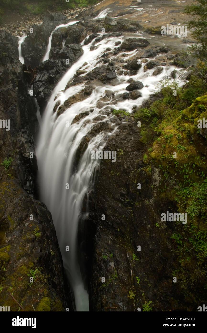 Englishman River Falls Provincial Park, Vancouver Island, British Columbia, Canada - Stock Image
