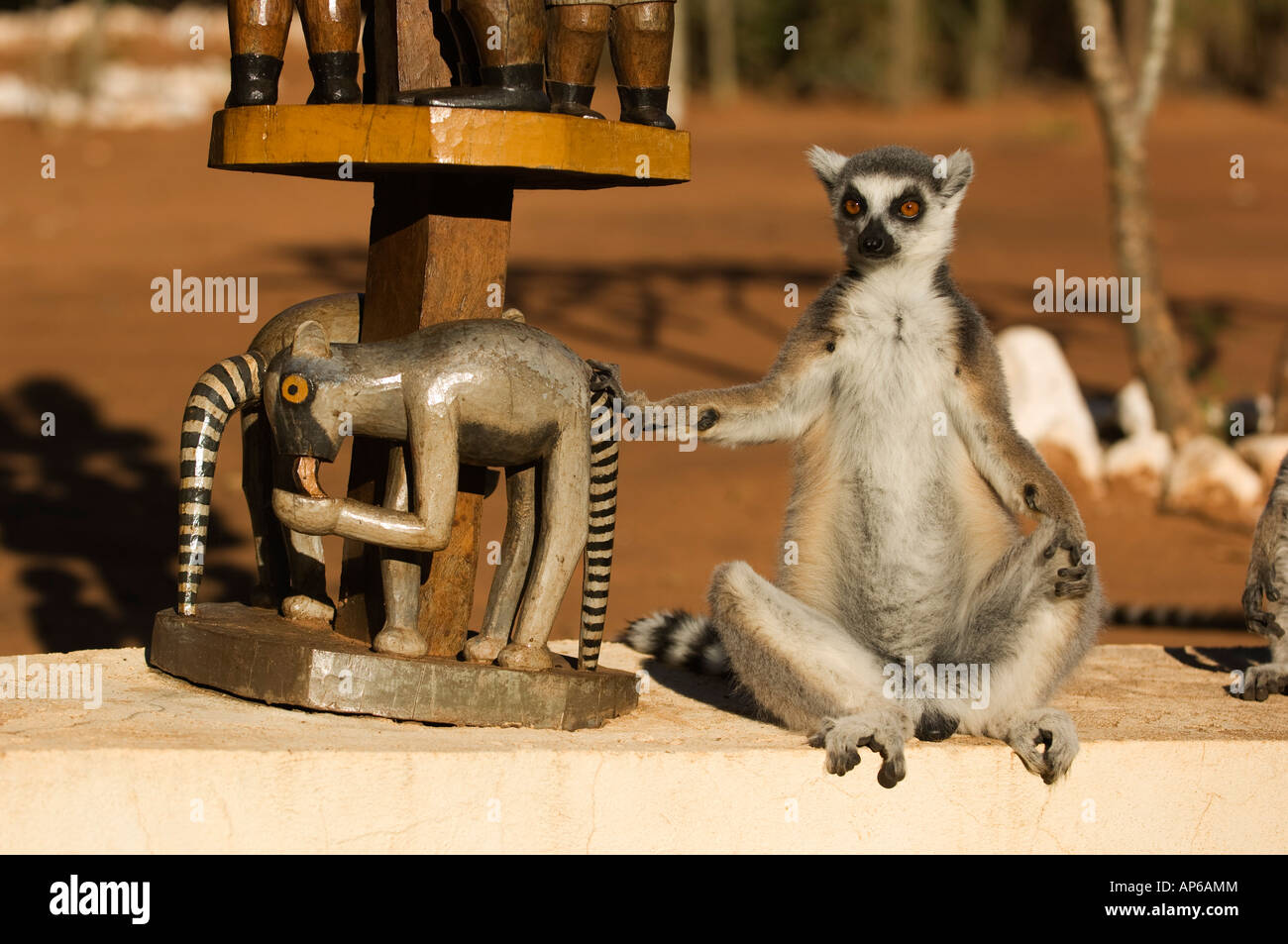 Ring-tailed lemur next to an aloalo Mahafaly tomb carving, Lemur catta,  Berenty private reserve, Madagascar