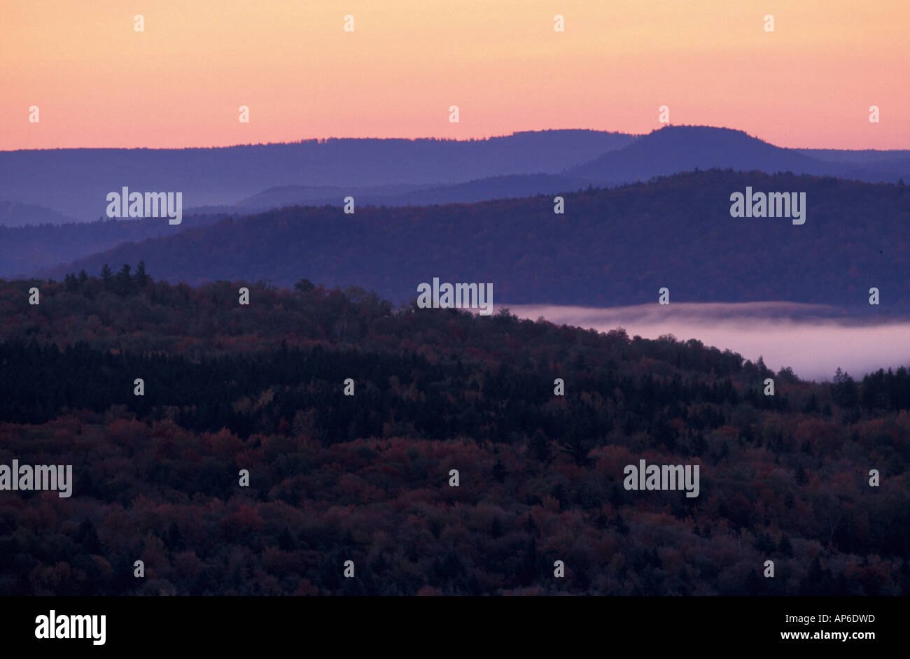 Peru, VT Sunrise in the Green Mountain National Forest. Near Bromley Ski Area. - Stock Image