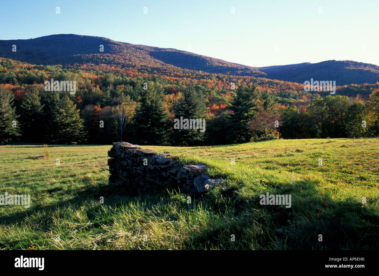 A stone wall in the Green Mountains in southern Vermont. TPL's purchase is in the distance. - Stock Image