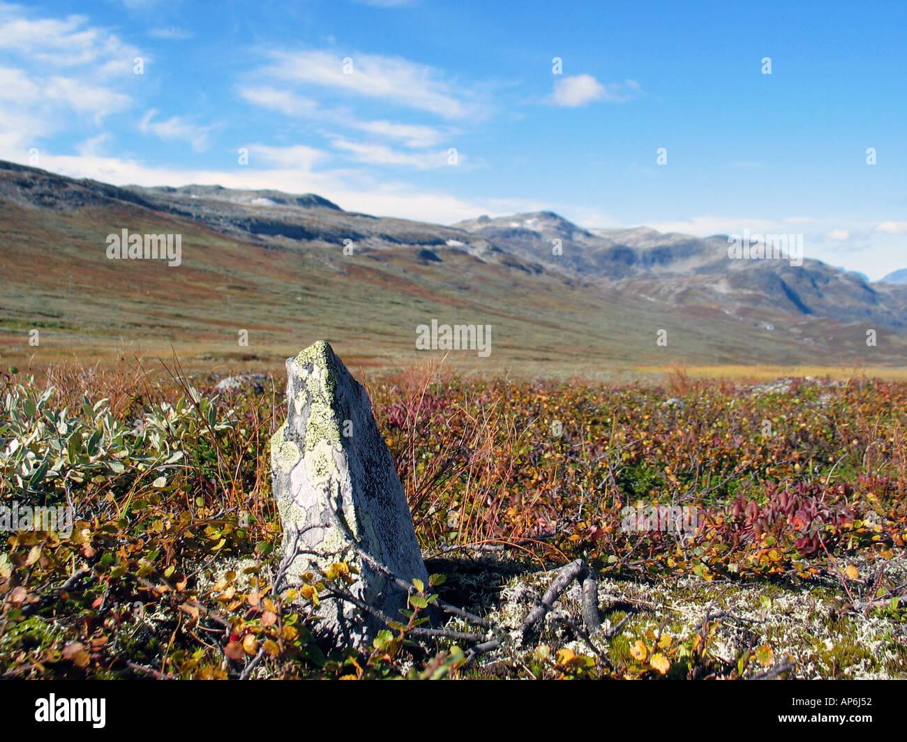 Rock standing out on Slettefjell, Vladresflya, during Indian summer Jotunheimen, Norway - Stock Image