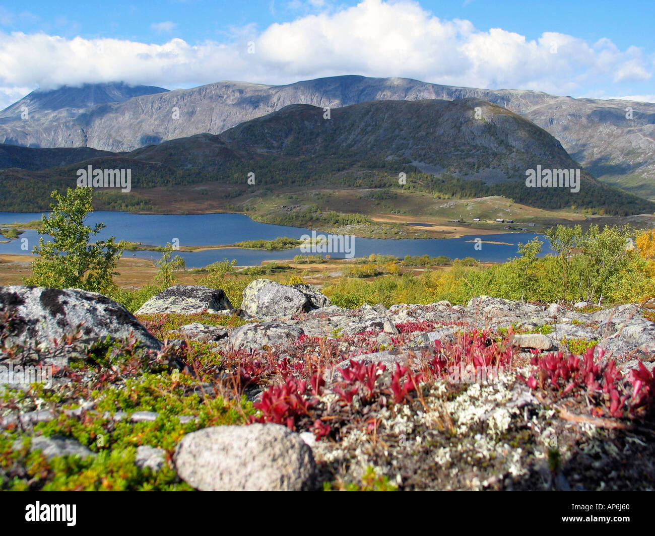 Indian summer on valdresflya, Jotunheimen, Norway - Stock Image