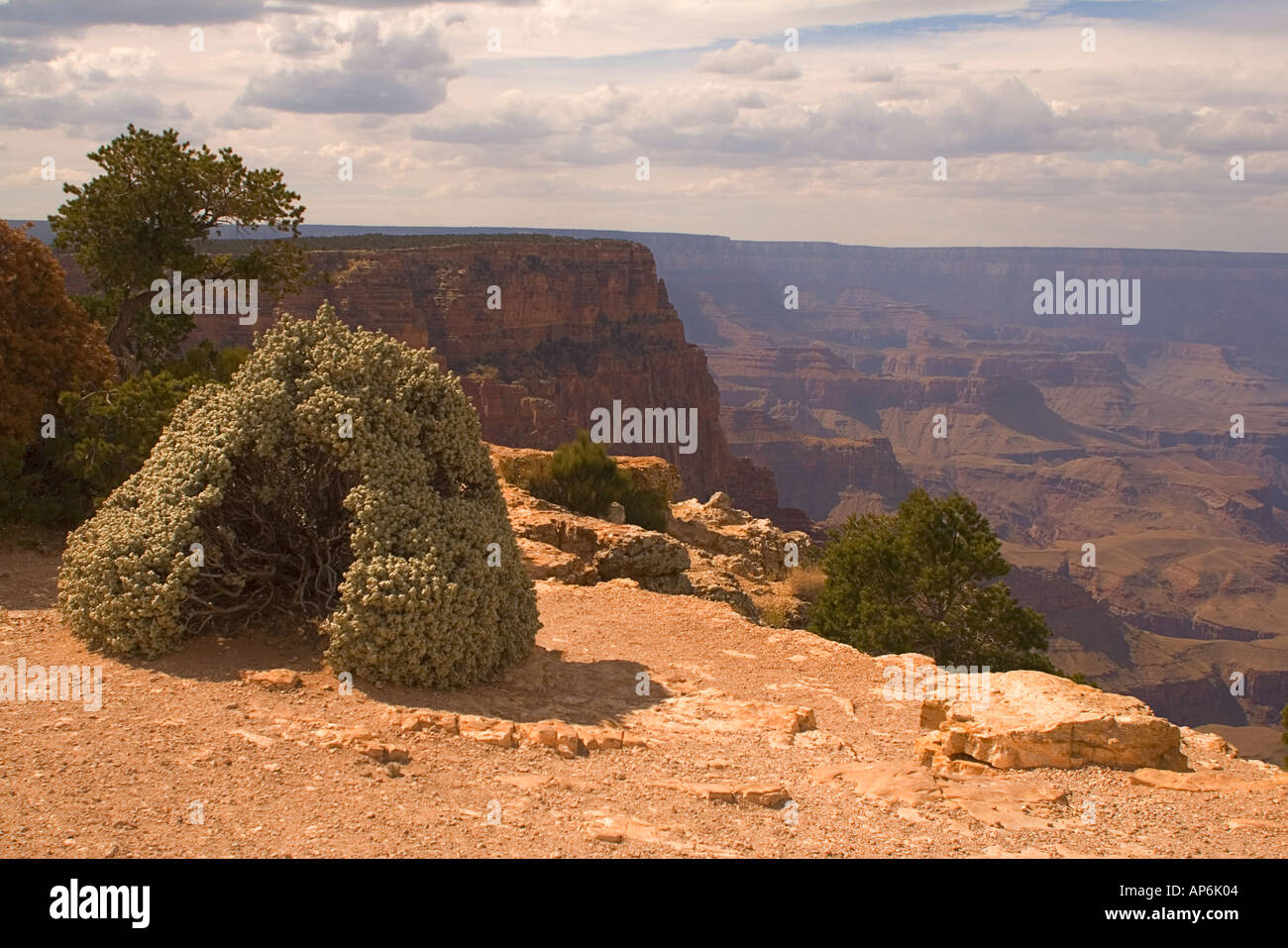 Grand Canyon, Desert View overlook - Stock Image