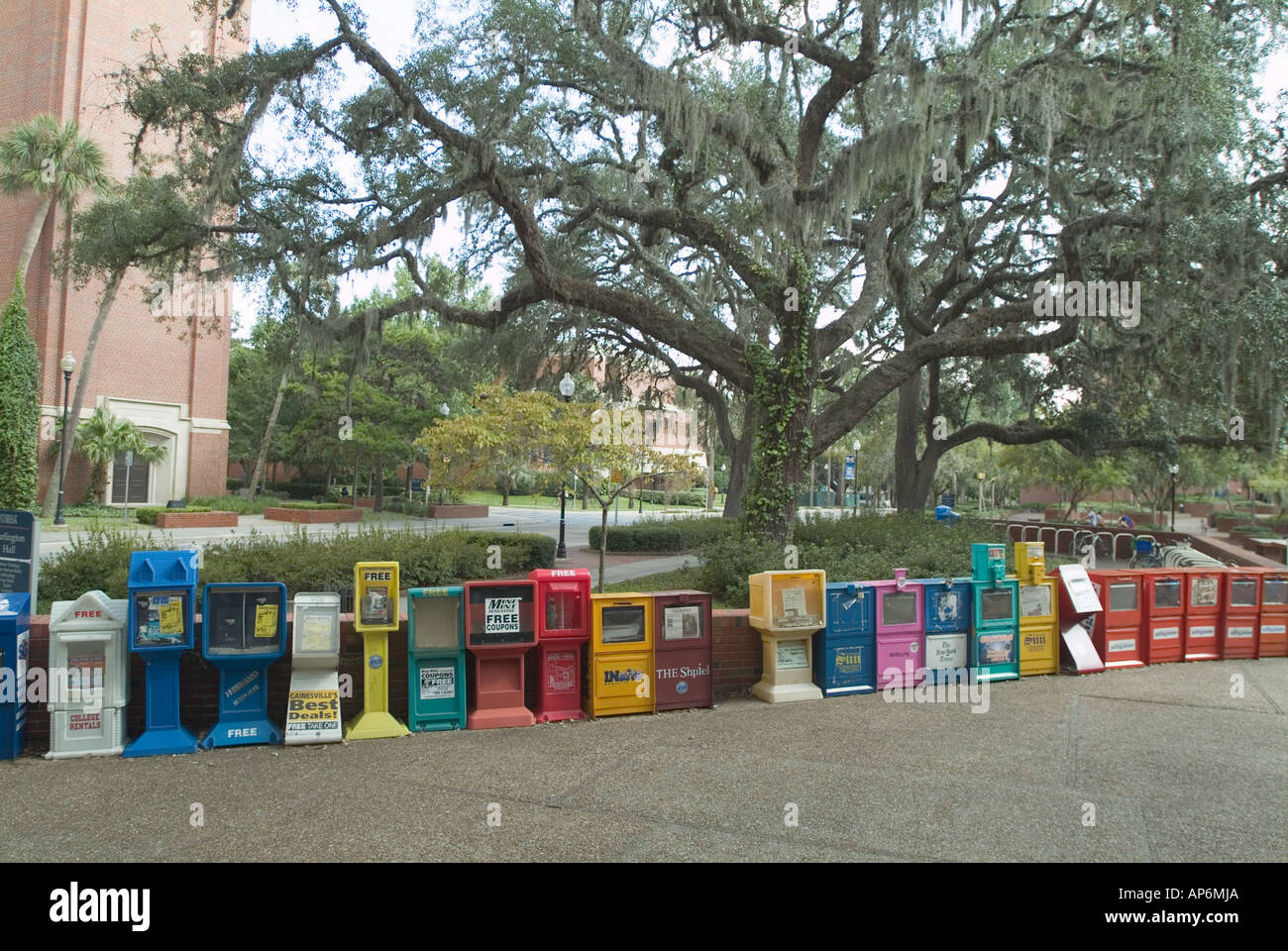 University of Florida campus Gainesville FL college school row of publication boxes newspaper boxes information - Stock Image