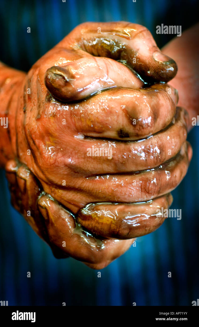 Workman's hands covered with oil, fingers clasped together, in automotive repair garage shop. - Stock Image